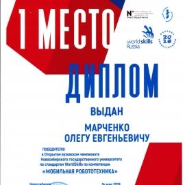 1 место — «Молодые профессионалы (WorldSkills Russia)»